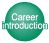 Career Introduction